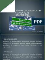 14. Matriz EFE
