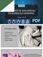 Criterios de Malignidad en Glándula Mamaria Final