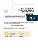 Duplicción Transcripción Código Genetico Traducción
