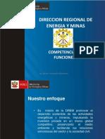 Competencias y Funciones DREM