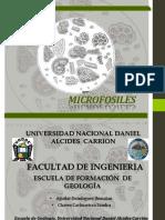 1 Micropaleontologia