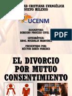 Divorcio Por Mutuo Consentimiento Dario Paredes
