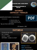 grupo 5 DIATOMEAS.pptx