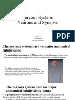 Biomedical, Nervous System_Fajar