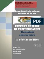 pag sed.pdf