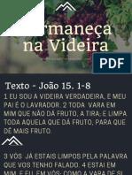 Permaneça Videira (1)
