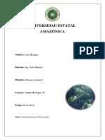 Phylum Protozooa