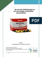 Protocolo Alergia a Penicilina. Sp Hgua 2018