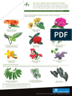 butterfly-house-plant-guide-20170302.pdf