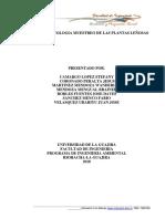 Informe de Ecologia plantas leñosas de riohancho-Dibulla la Guajira