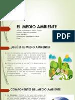 El Medio Ambiente1