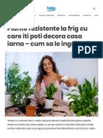 Plante Rezistente La Frigul Iernii, Pentru Casa Si Gradina