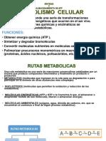 síntesis y almacenamiento de atp