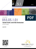 Small Cells and 5G Evolution.pdf