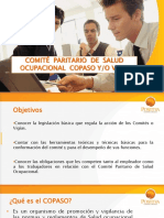 presentacioncopaso-120609104956-phpapp01
