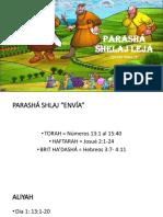 PARASHÁ SHELAJ