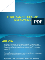 Anemia Approach S.elya