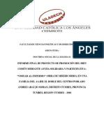 Informe Final de Proyecto de Promoción Del Bien Común -1