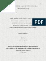 Diagnostico Empresarial Carysistem Andina