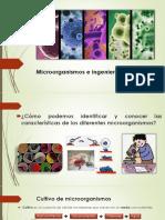 Ingenieria genética y microbiología.pptx