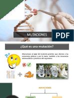 Mutaciones.pptx
