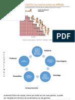 DNPS - Desenvolvimento Neuropsicomotor Em Pediatria
