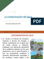 Contaminacion Del Agua-1