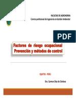 Factores de Riesgo Ocupacionales - PDF