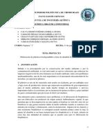 1 BIOPLASTICOS PROYECTO.docx