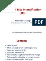 1c._System_of_Rice_Intensification__SRI__-_Selvaraju.pdf