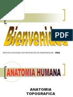 Anatomia Topografica.pdf