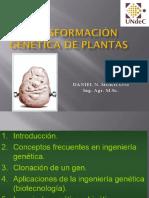 Transformación Genética de Plantas 2019.pptx