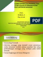 ppt proposal forensik.pptx