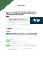 Reportes Unidad II