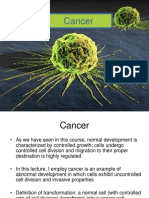 Lecture #11 Cancer C19