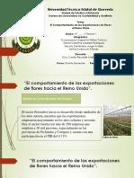 El Comportamiento de Las Exportaciones de Flores Hacia El Reino Unido(1)