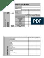 CUESTIONARIO DIMENSIÓN ORGANIZATIVA.pdf