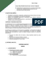 Plan de Trabajo Diplomado Virtual