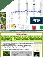 terpenoides__2017-II.pdf