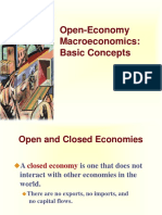 Basic Concepts of Open Economy