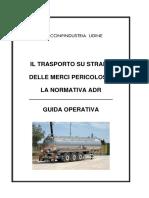 Guida ADR 2019