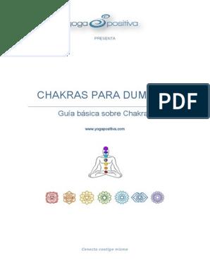 la próstata a la que se asocia el chakra en línea