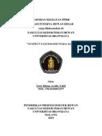 nguji Kompre Kesmavet 2019-1