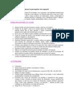 Actividades_para_mejorar_la_percepcion_v.docx