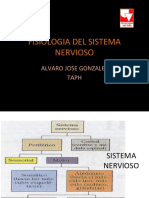 3 Fisiologiadelsistemanerviosocopia 130419144600 Phpapp02 (1)