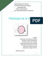 Informe Sobre La Fisiologia de La Vision