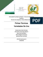 Fichas Técnicas Variedades de Uva
