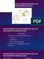 Fisiologia Sistema Respiratorio Veterinario