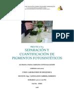 Separación y Cuantificación de Pigmentos Fotosintéticos