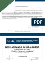 DANY ARMANDO GAVIRIA GARCIA.pdf